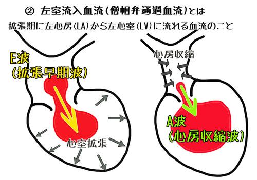 心臓2-1.jpg